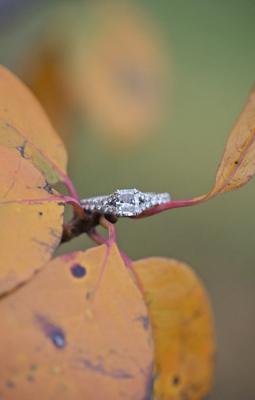 Federal-Hill-Engagement-BritneyClausePhotography-004
