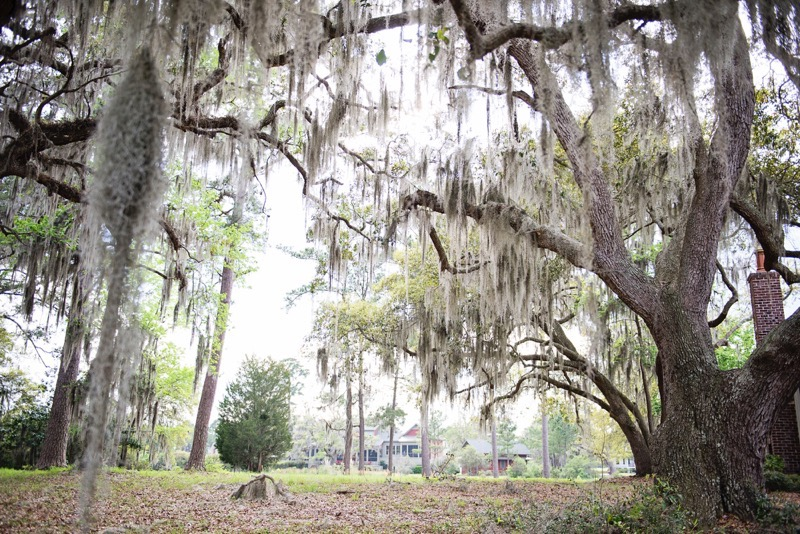 Oldfield_South_Carolina_Britney_Clause_Photography_007