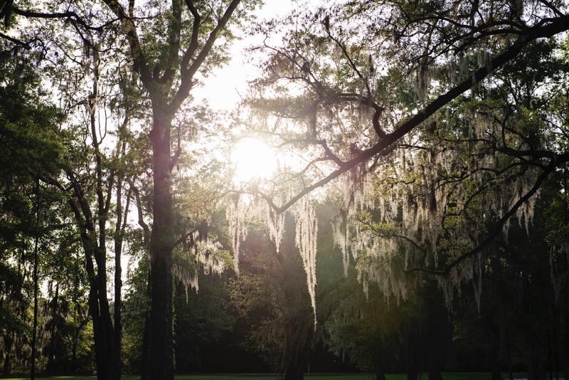 Oldfield_South_Carolina_Britney_Clause_Photography_031