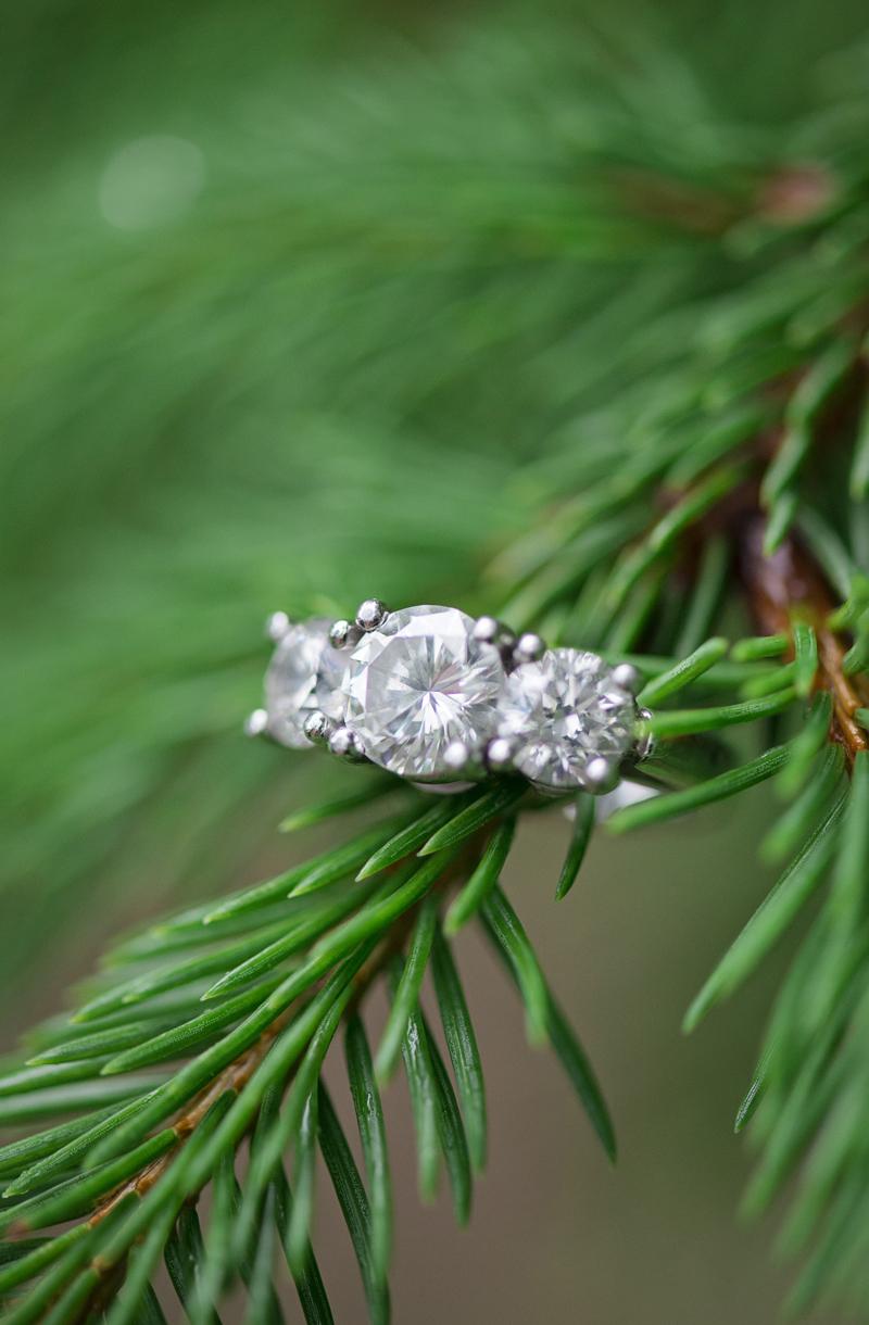 Emory_Grove_Maryland_Engagement_Wedding_Photographer_Britney_Clause_Photography_022