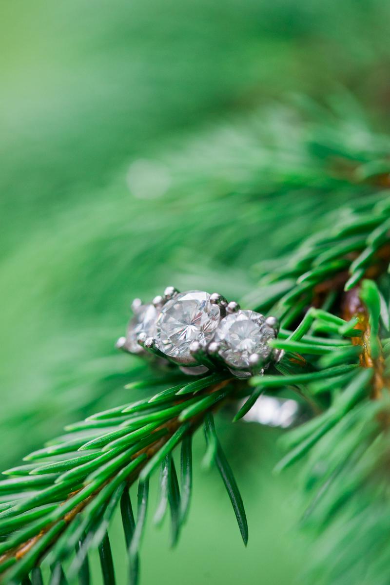maryland-wedding-photographer-engagement-year-review-0024-photo
