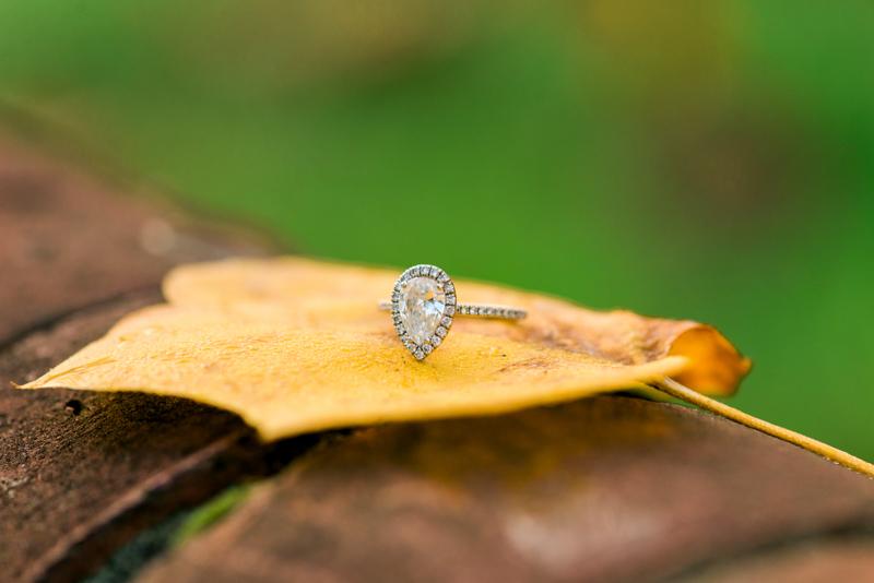 maryland-wedding-photographer-engagement-year-review-0056-photo