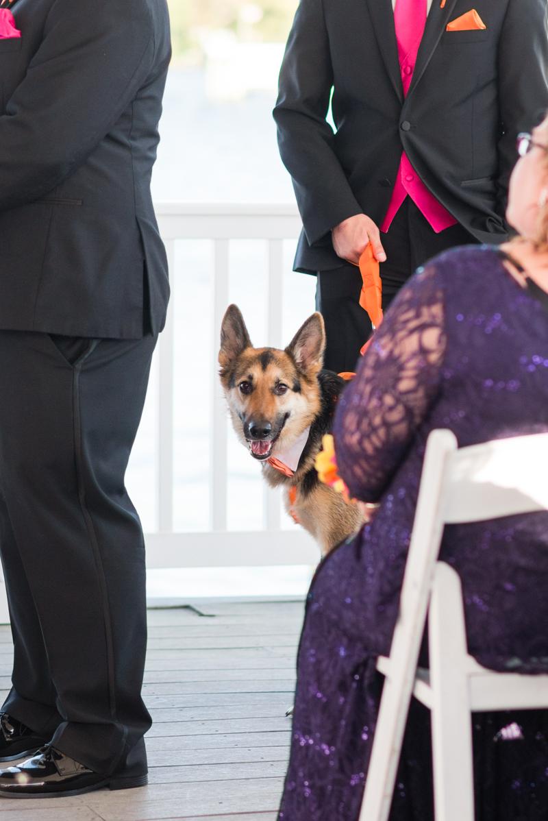 maryland-wedding-photographer-anchor-inn-pasadena-0014-photo
