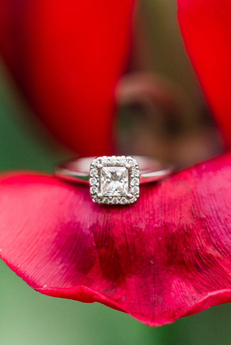 maryland-wedding-photographer-brookside-gardens-0007-photo