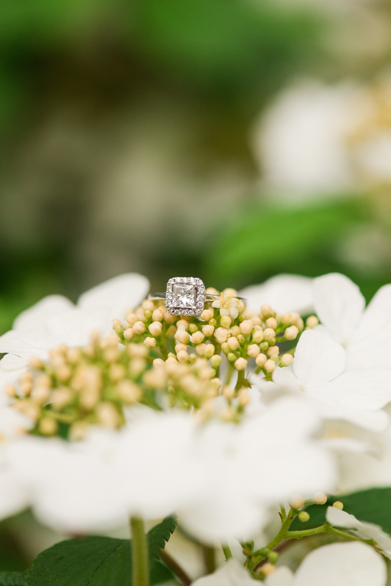 maryland-wedding-photographer-brookside-gardens-0021-photo