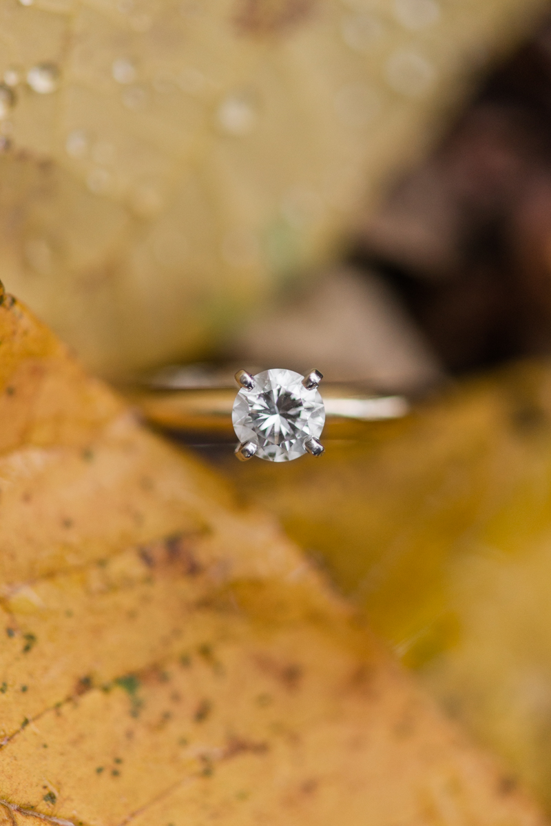 Fall engagement ring in Gettysburg National Military Park