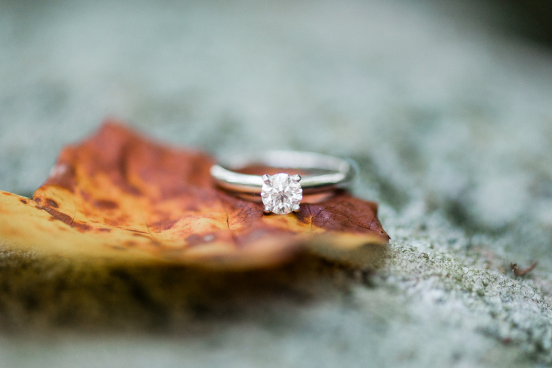 Middle Patuxent Environmental Area Engagement Ring