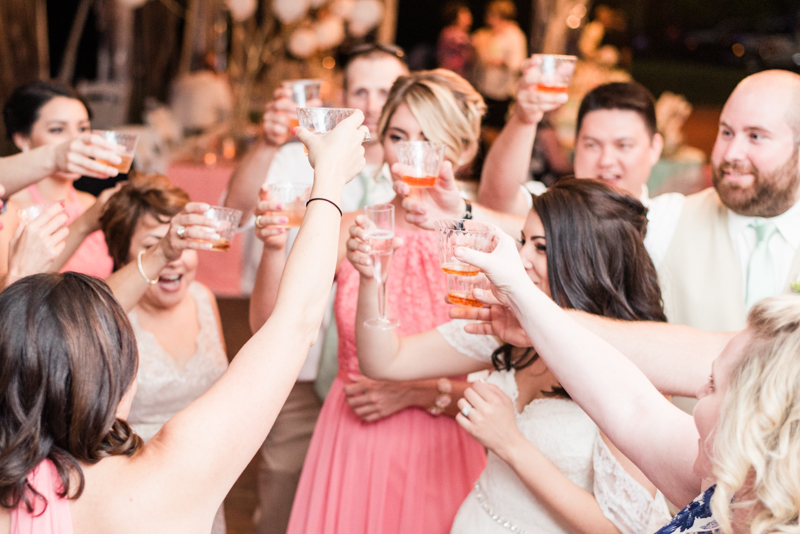 2016 wedding favorites maryland photographer billingsley house toast