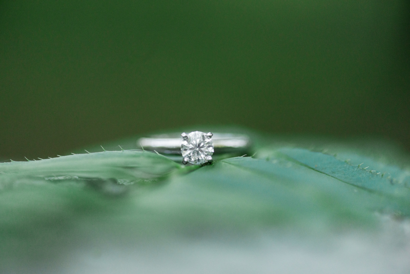 2016 engagement favorites maryland virginia photographer columbia ring