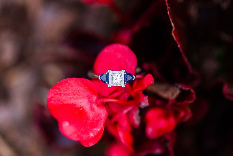 maryland wedding photographer engagement ring washington dc