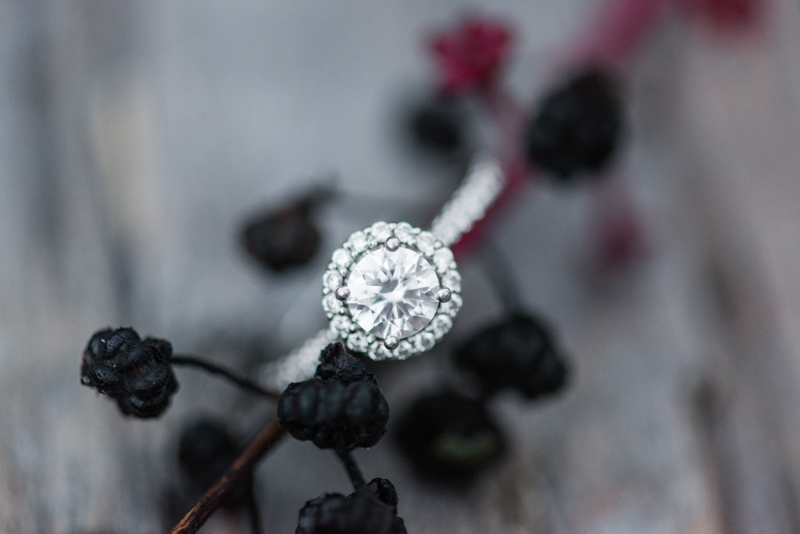 maryland wedding photographer engagement ring susquehanna