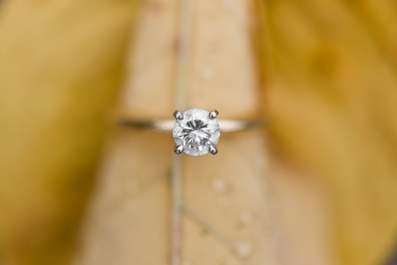 maryland wedding photographer engagement ring gettysburg