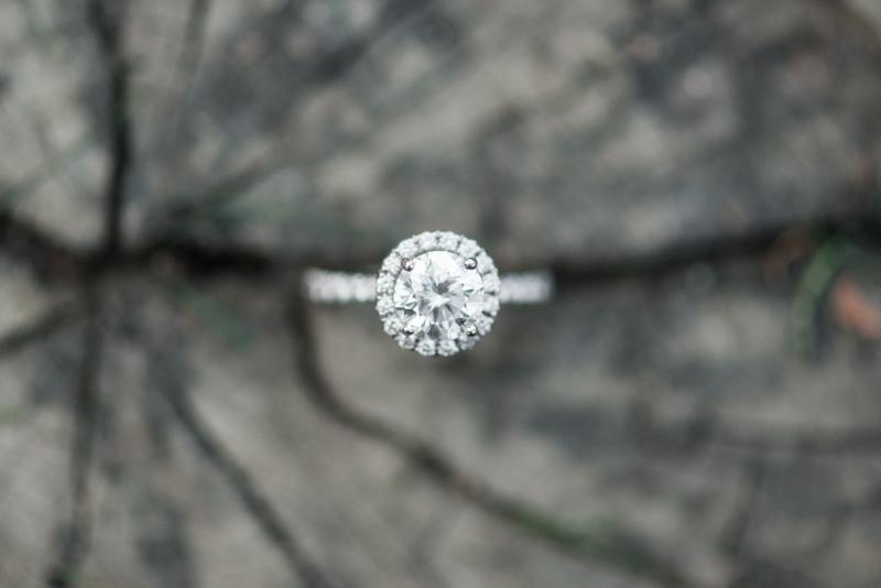 maryland wedding photographer engagement ring great falls virginia