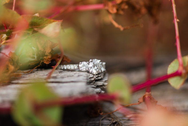 maryland wedding photographer engagement ring jerusalem mill