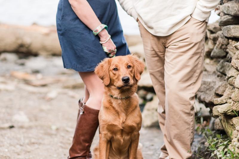 Wedding Photographers in Maryland Susquehanna State Park Engagement Session Sunset Dog