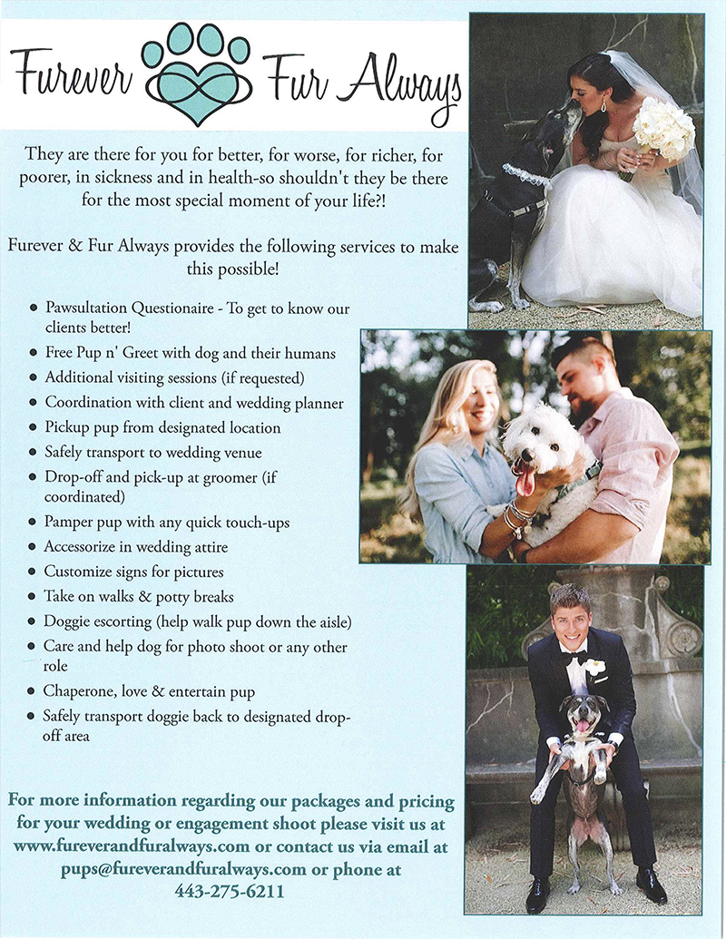 Wedding Photographers in Maryland Furever & Fur Always Pet Services