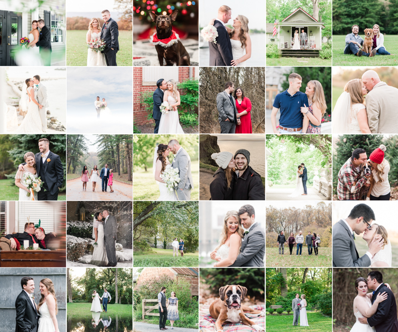 Wedding Photographers in Maryland Year Review Weddings Engagement Family Pets