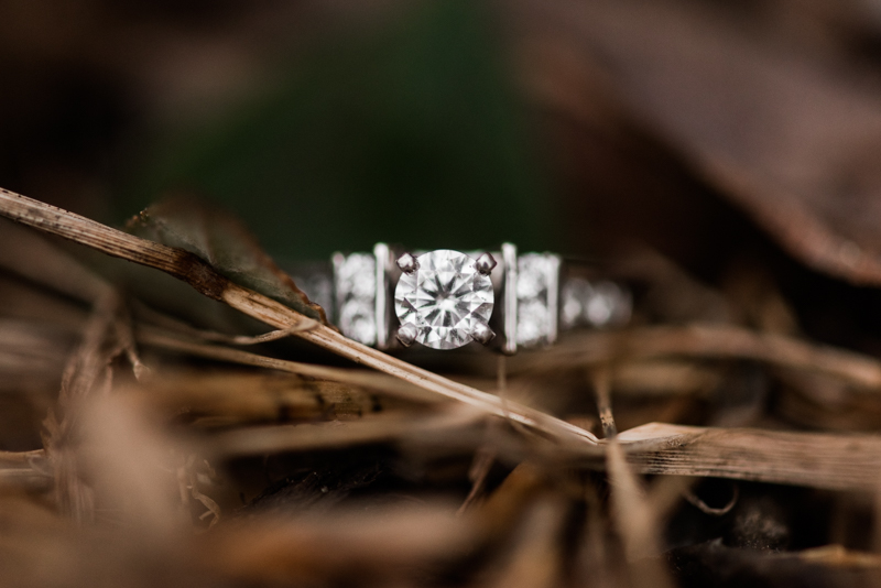 Wedding Photographers in Maryland Centennial Park Ellicott City Engagement Ring