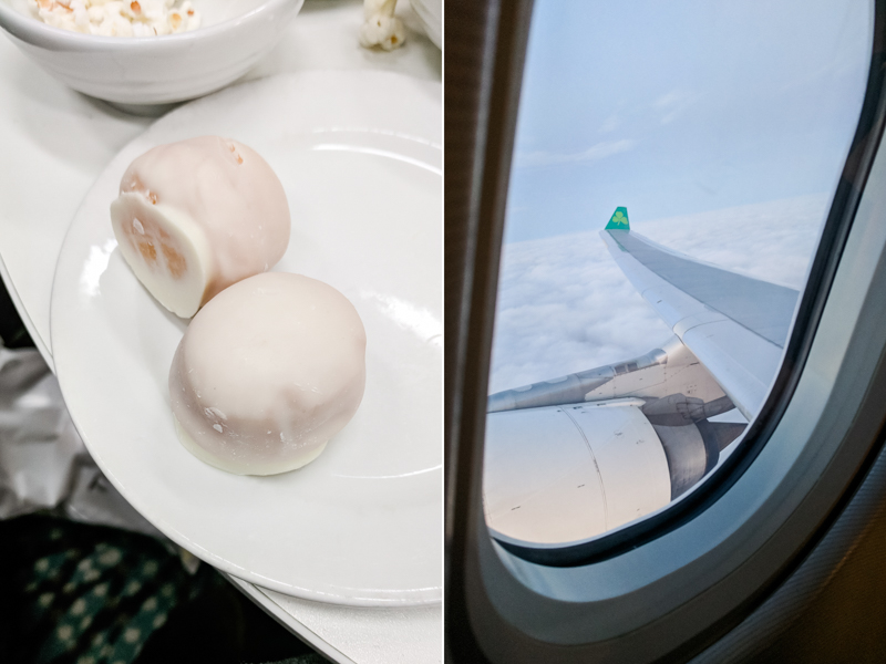 Ireland Adventure 2018 Dublin Aer Lingus