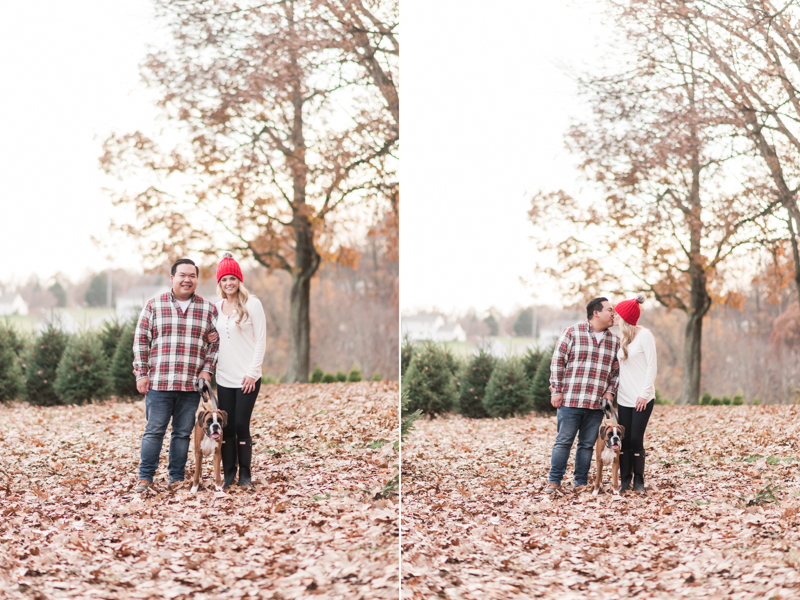 Wedding Photographers in Maryland Pine Valley Farms Family Session Christmas Boxer McQueen