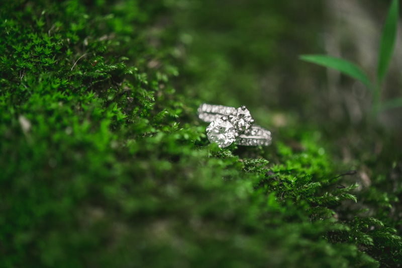 A gorgeous engagement session and ring at Rock Creek State Park in Washington DC by Britney Clause Photography Wedding Photographers in Maryland